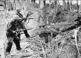 Soldados estadounidenses portan M1 garand en el frente del pacífico