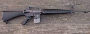 M16 ds