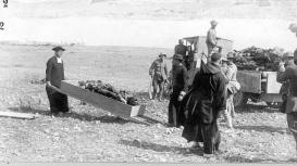 Recogida de los cuerpos de los soldados españoles que en su mayoría fueron degollados.