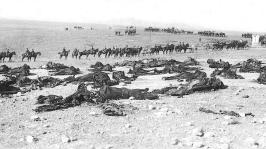 Restos del regimiento en formación frente a cuerpos de caballos y jinetes tras las operaciones.