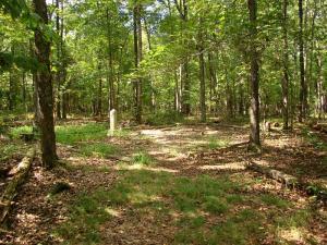 En 1890, el gobierno estadounidense declaró el territorio de Chickamauga parque nacional para conmemorar a los miles de muertos de la batalla.
